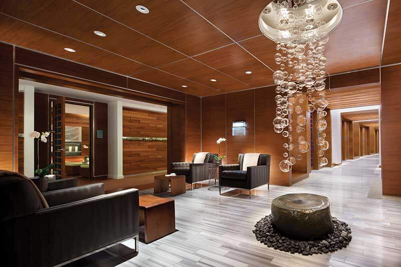 free vdara espa spa rewards